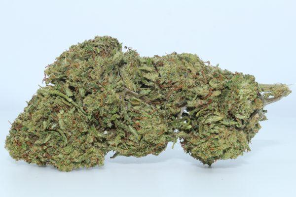 DrGanja-Hawaiian-Haze-CBD-Flower-1