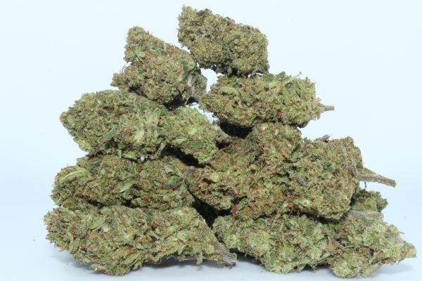 DrGanja-Hawaiian-Haze-CBD-Hemp-Flower-1