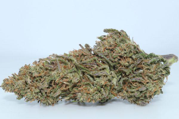 DrGanja-Berry-Blossom-CBD-Flower-2