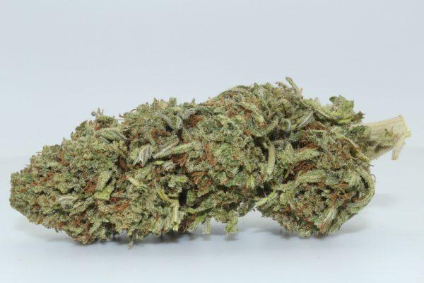 Dr.Ganja OG Lime CBD Flower