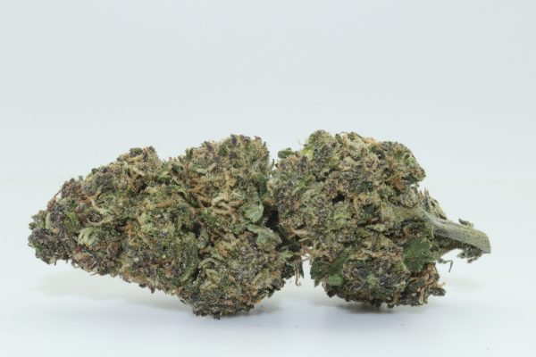 Dr.Ganja Sour Blueberry Kush CBD Hemp Flower
